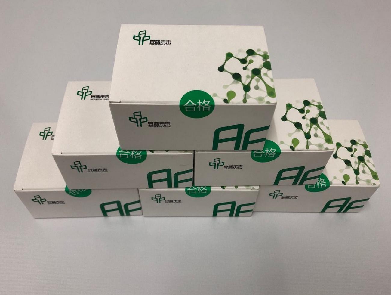 基础型DNA恒温快速扩增试剂盒